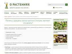 О растениях, Блог о растениях (редизайн), г. Санкт-Петербург